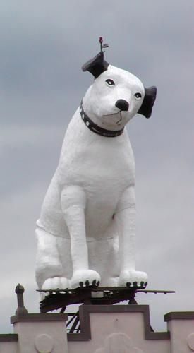 Nipper Rca Dog Albany Ny Home Town Memories Pinterest