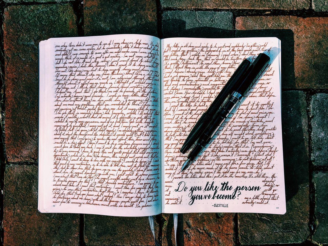 виды дневников картинки обладаете недюжинным талантом
