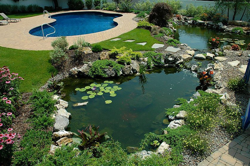 If One Pond Is Good Are 2 Ponds Better Cottage Garden Design Garden Design Plans Cottage Garden