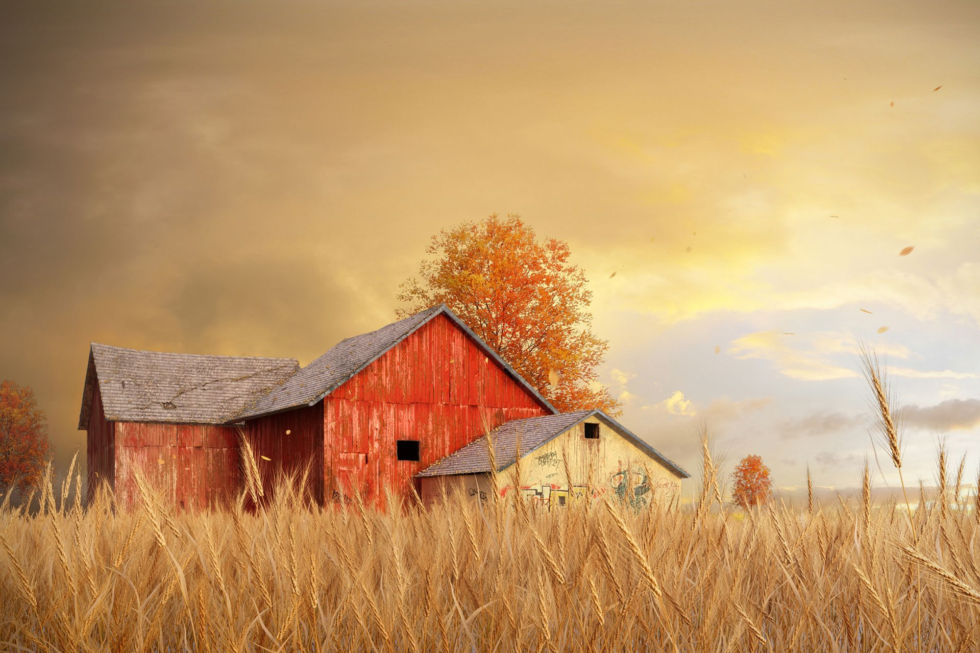 professional renderings autumn - Google Search
