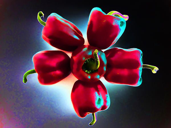 A photograph of some red bell peppers arranged in the shape of a flower with a mysterious style