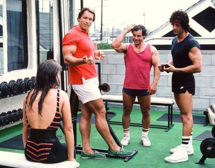 Arnold, Franco, and Sly Body Building Pinterest Arnold - fresh arnold blueprint training review