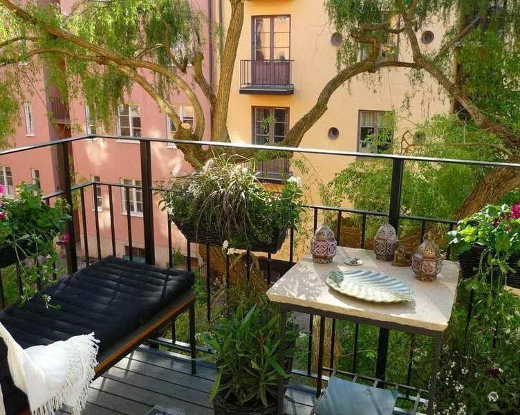 Brise-Vue Naturel- Plantes De Balcon Contre Les Regards Curieux