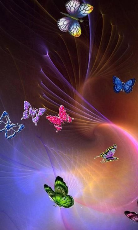 Fashion Butterfly Wallpapers Download Fashion Butterfly