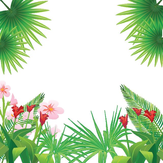 Flores Tropicais Tropical Flores Bonitas Green Png E