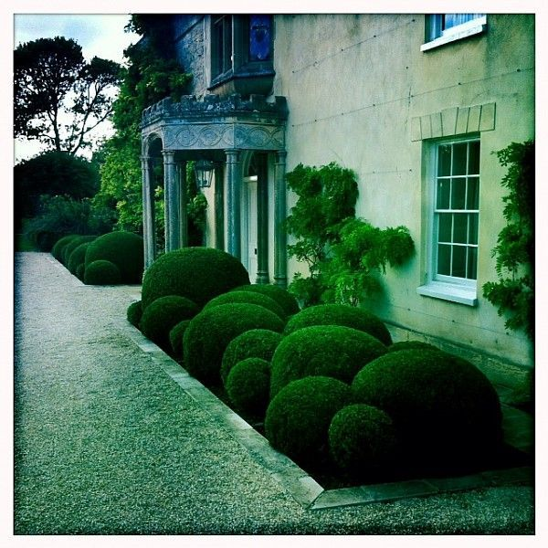 Box Hedge Front Garden Entrance