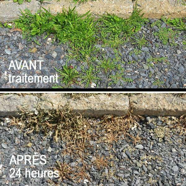 herbicide maison voici une recette pour traiter les mauvaises herbes dans les entr es. Black Bedroom Furniture Sets. Home Design Ideas