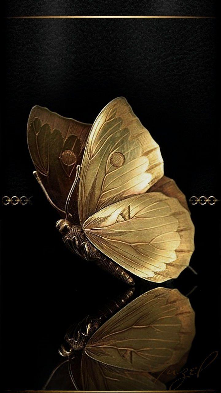 Black and gold butterfly | Bilderrahmen | Pinterest | Butterfly ...