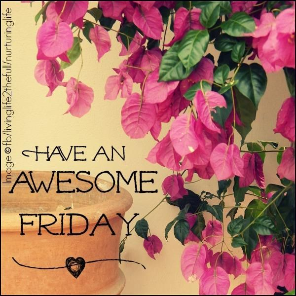 Have an Awesome Friday