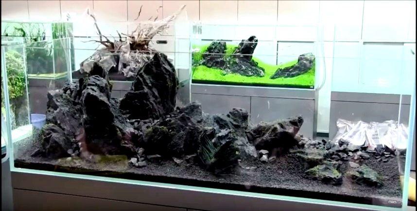 Kuvahaun Tulos Haulle Japan Inspired Aquarium