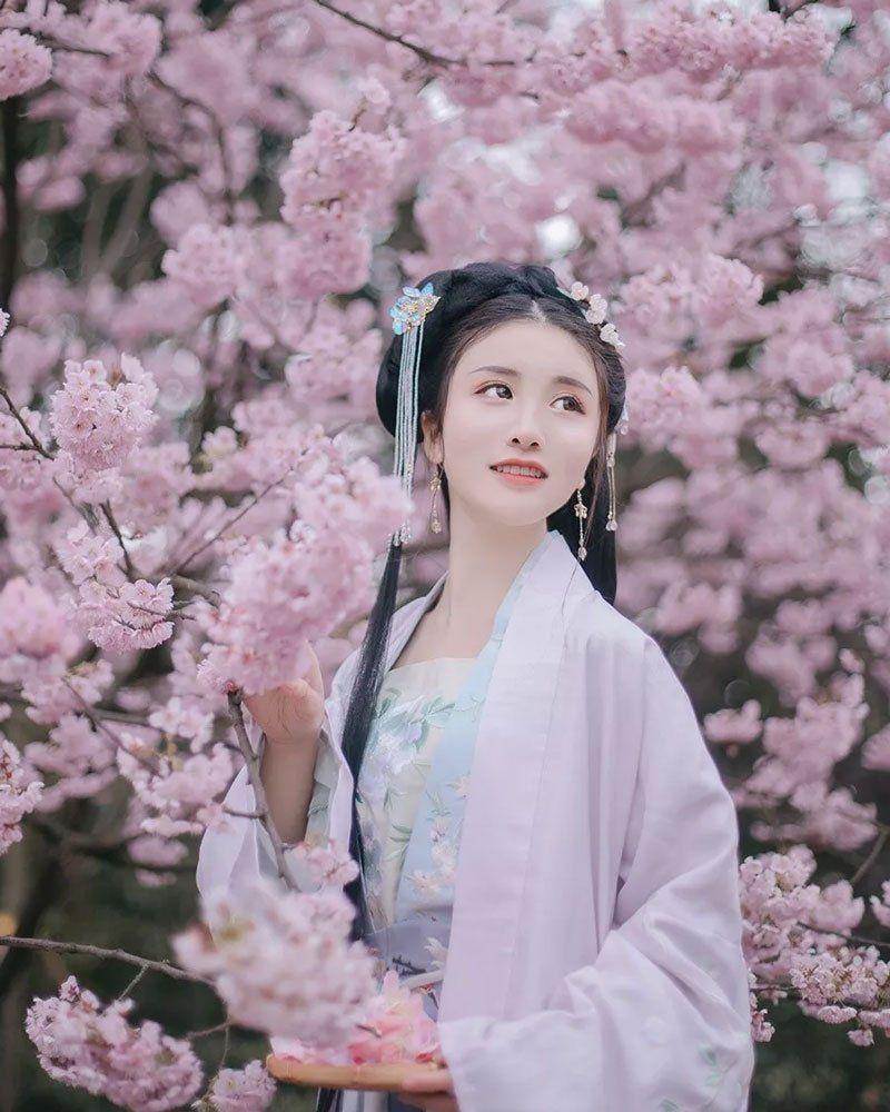 Cherry Blossoms Hanfu And Girls 2021 Hanfu Hanfu Girl Blossom