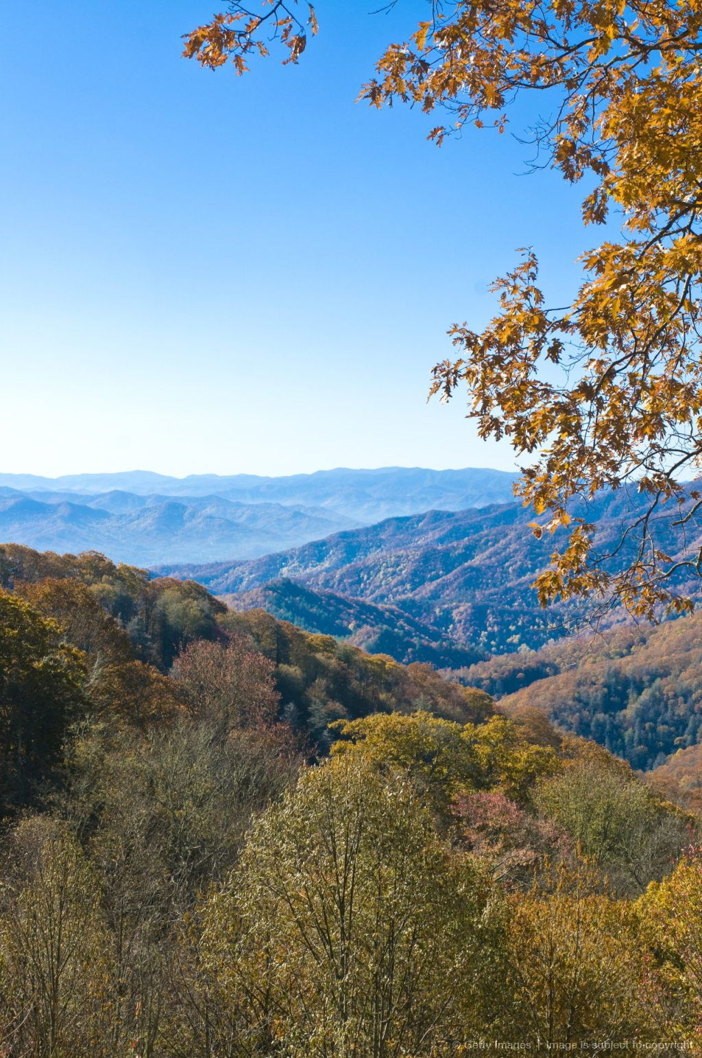Image detail for -View over valley with colourful foliage in the Indian summer, Great Smoky Mountains National Park, UNESCO World Heritage Site, Tennessee, United States...