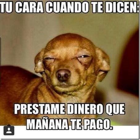 Memes Los Mejores Solamente Humor En Taringa Memes Funny Memes Spanish Humor