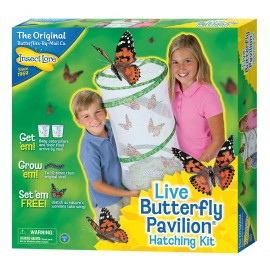 This educational kit offers children the invaluable