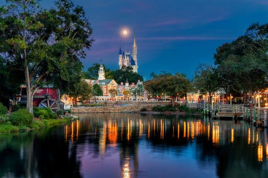 Moon Over Liberty Square Disney Camera