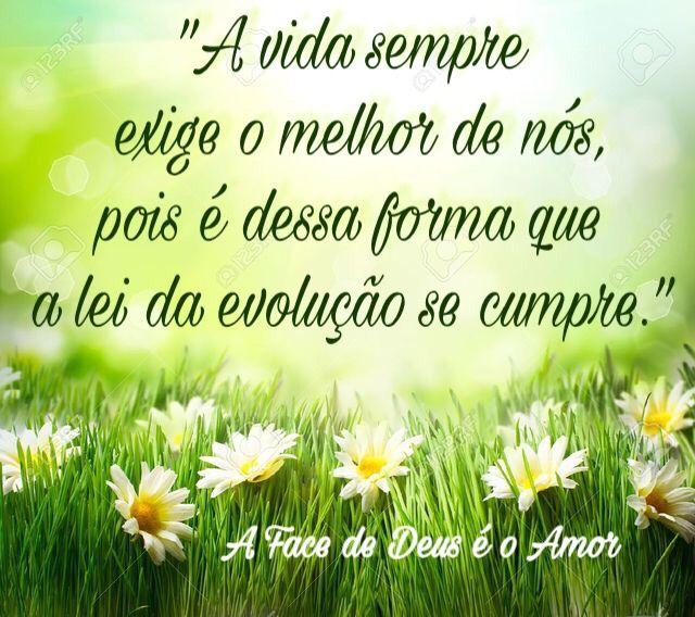#vida #evolução