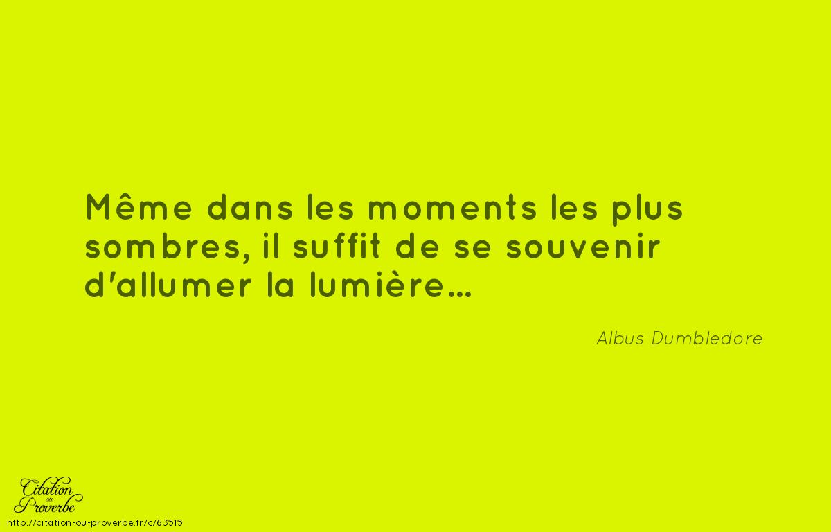 Citation De Albus Dumbledore Regle De Vie Citation Sombre