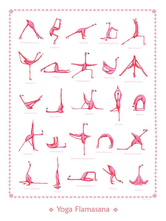 Poster mit 25 Yoga-Haltungen mit rosa Flamingos, 18 x 24 #wideangle