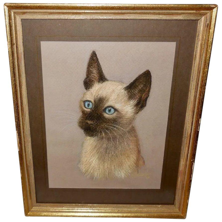 Ruth Bezanker Pastel Portrait Of A Cat In 2020 Pastel Portraits