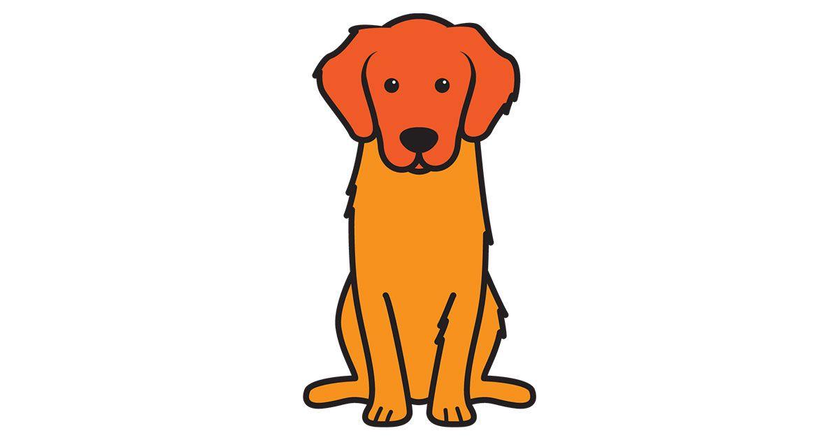 Golden Retriever Color Edition Download Cartoon Dog Golden