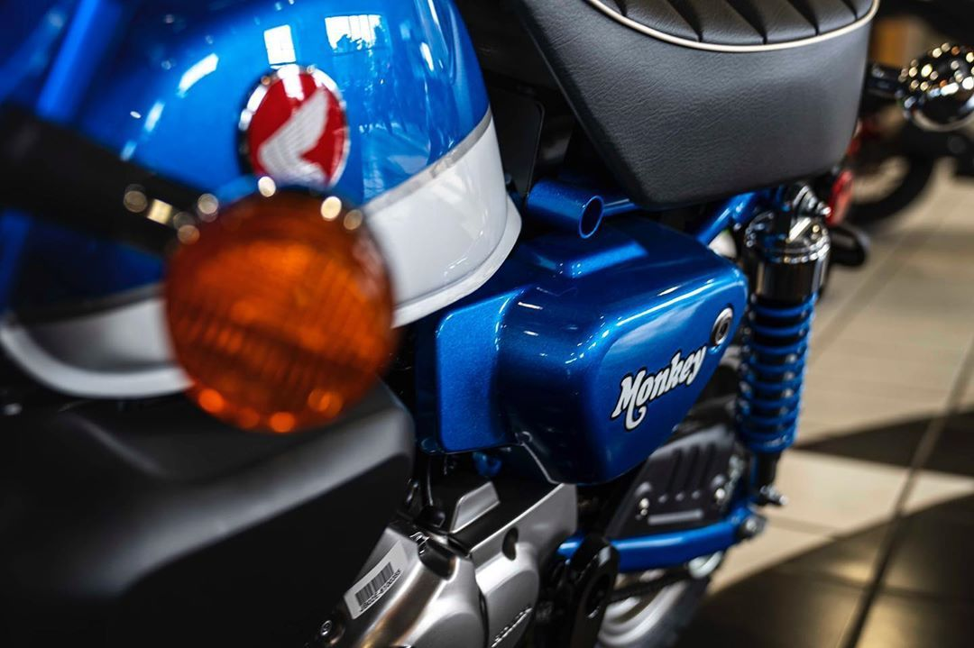 It S A Brand New Monkey And It S Blue That Is An Ultra Rare Combo Give Us A Call For More Info Monkey Hondamo In 2020 Football Helmets Bike Life Riding