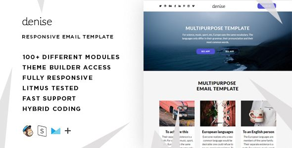 Denise \u2013 100+ Modules - Responsive Email + StampReady Builder