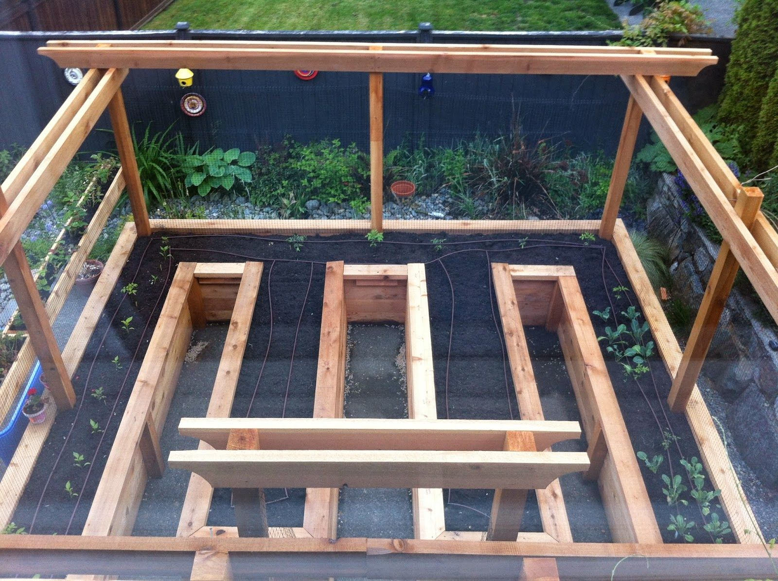 Raised Garden Bed Enclosure - deer and critter proof ...