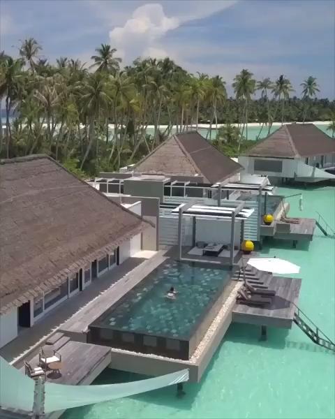 #travel #travelphotography #photography #nature #travelgram #love #photooftheday #instatravel #instagood #wanderlust #trip #travelblogger #adventure #traveling #vacation #picoftheday #travelling #explore #instagram #landscape #beautiful #ig #holiday #like #beach #summer #naturephotography #art #photo #bhfyp #honeymoon videos The Maldives Honeymoon