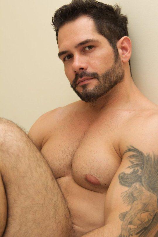 osos peludos www temagay com