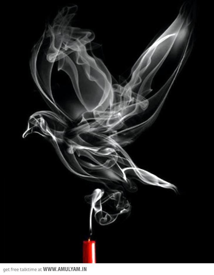 Smoke Bird Smoke Art Photography Subjects Create Contest