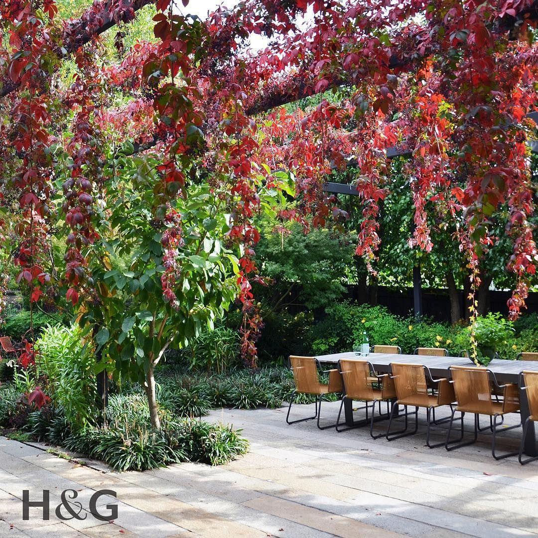 Native Home Garden Design: Australian House & Garden (@houseandgarden) On Instagram