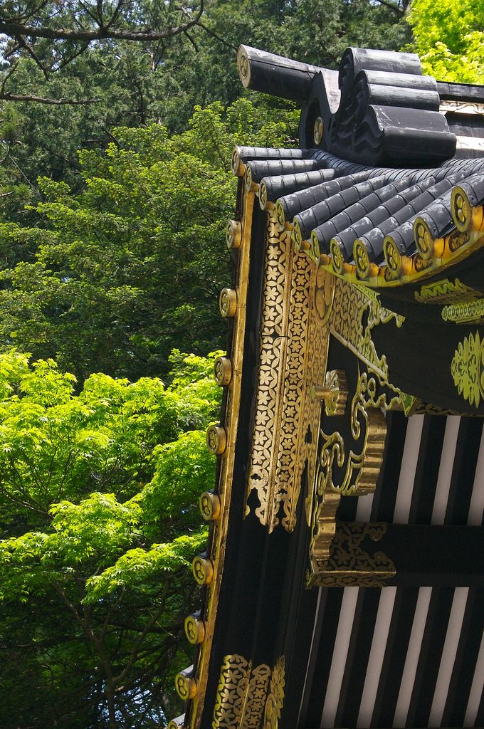 Toshogu in green | Japan Travel | Japan architecture ...