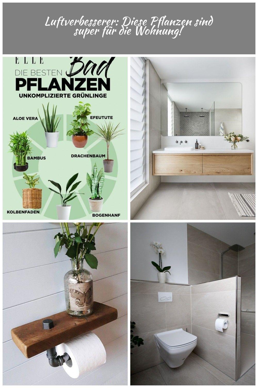 Luftverbesserer Diese Pflanzen Sind Perfekt Fur Deine Wohnung Pflanzen Haben Es Im Badezimmer Nicht Immer Einfach Schliesslich Decor Tutorials Diy Decor Decor