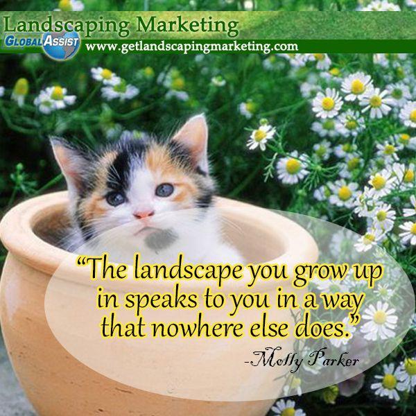 landscaping marketing plan