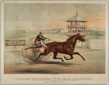 Nevada 24x16 HORSE RACING 1892 Harness Racing Carson City Vintage old poster