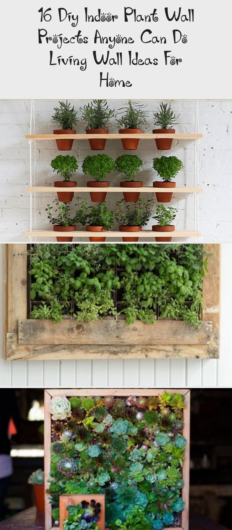 16 Diy Indoor Plant Wall Projects Anyone Can Do Living Wall Ideas For Home B Diy Home Ideas Indoor In 2020 Indoor Plant Wall Hanging Plants Indoor Plant Wall