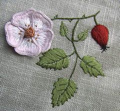 Stumpwork Wild Rose embroidery
