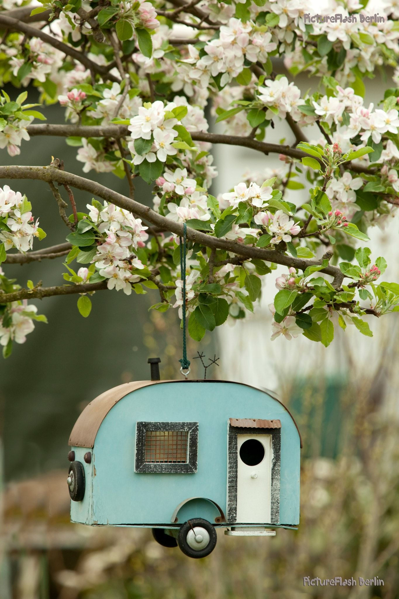 birds house springtime Beautiful birdhouses, Bird house