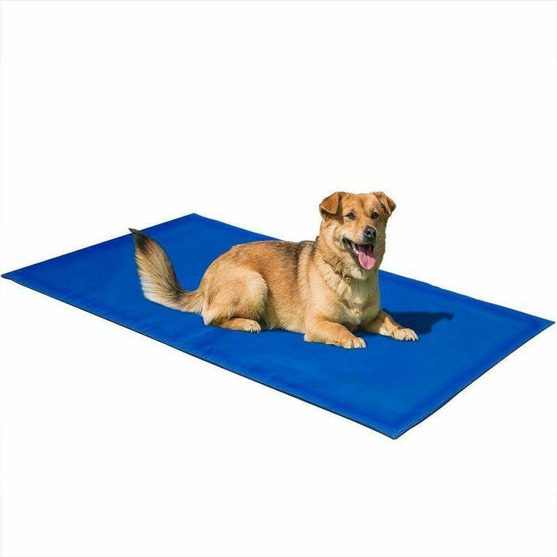 Pet Dog Cooling Mat Blue Dog Cooling Mat Pet Dogs Pets