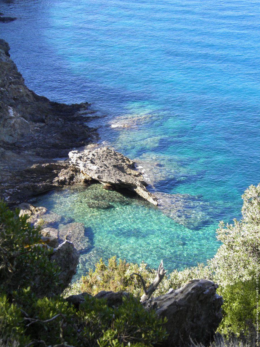 Ile De PortCros ProvenceAlpesCôte DAzur France France - Location port cros