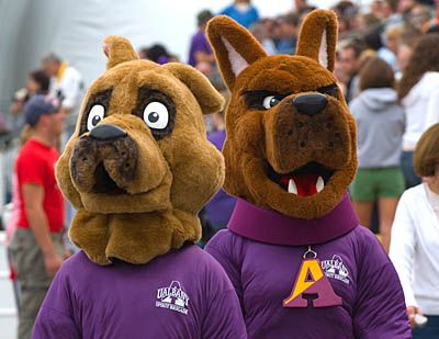 Albany Great Danes Mascots Lil D Left And Damien Lil D Debuted