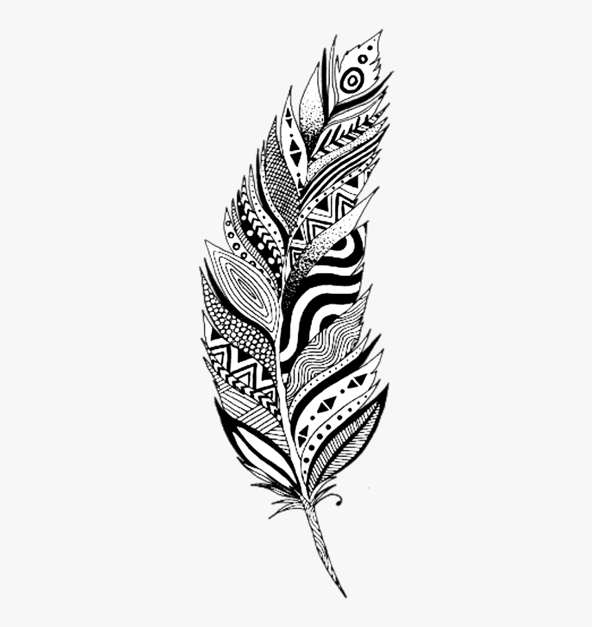 Drawing Feather Boho Transparent Png Clipart Free Download Black And White Feather Clip Art Png Feather Clip Art Black And White Art Drawing Feather Drawing