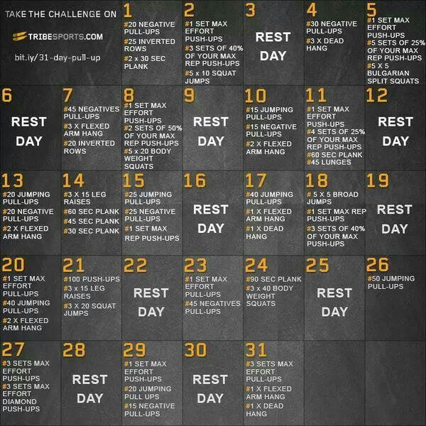 Tribe sports 30 day pull up challenge Healthy mind, healthy body - new tribal blueprint diet