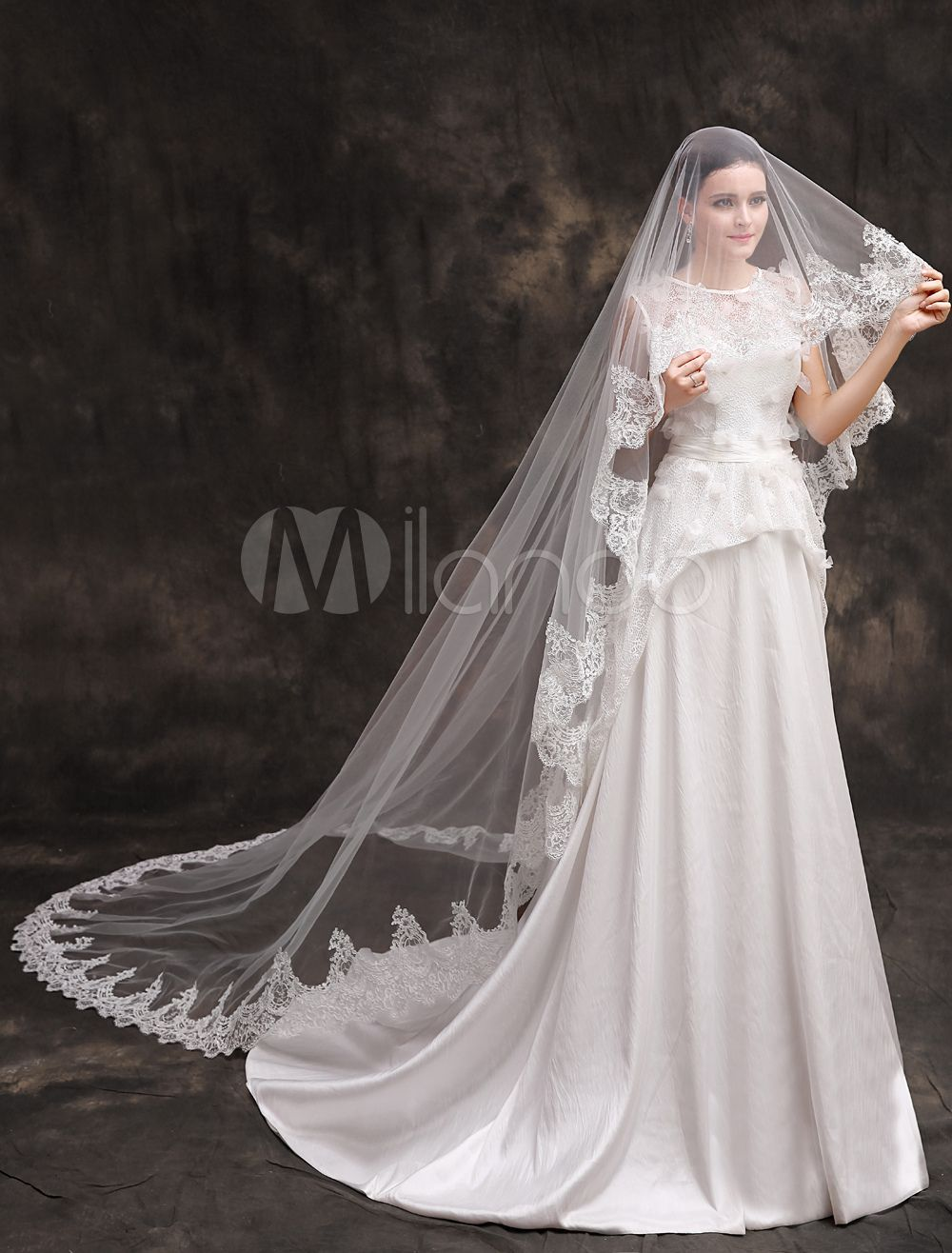 Dentelle blanche moniste lace applique polyester wedding bridal veil