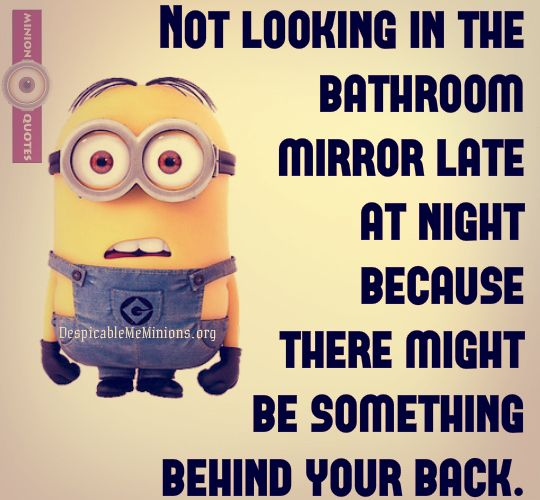 Scare Of The Late Night Mirror Fear Quotes Minions Minions Funny