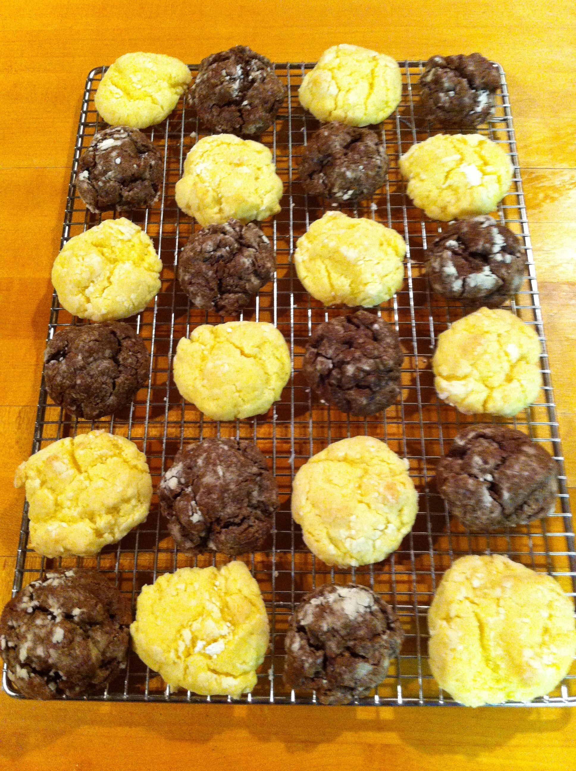 I wouldn't call these ooey gooey...Ha! I would add chocolate chips to them next time. They are SO EASY, though! Ooey Gooey Cookies  8oz cream cheese;  1 stick butter;  1 tsp vanilla;  1 egg;  1 box yellow cake mix (or any other flavor)    Mix all. Roll in powdered sugar. Bake at 350-375 for about 15 min. This picture is lemon and chocolate cake mix.