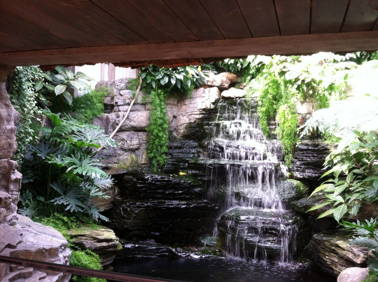 Natural stone pond designs with small waterfall and indoor for Indoor fish pond ideas