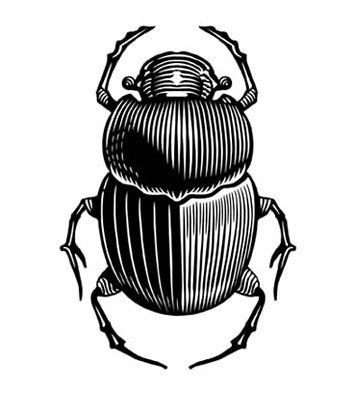 Bug Amulet Ancient Egypt Insect SCARAB BEETLE Vinyl Decal Sticker