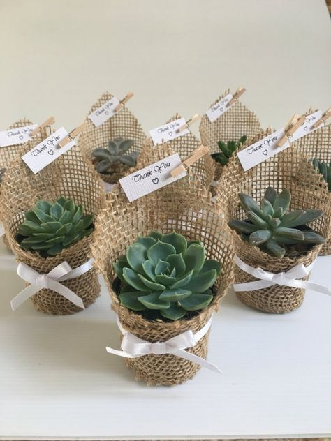Succulent Favors | Wrapped in Hessian #bridalshowerdecorations