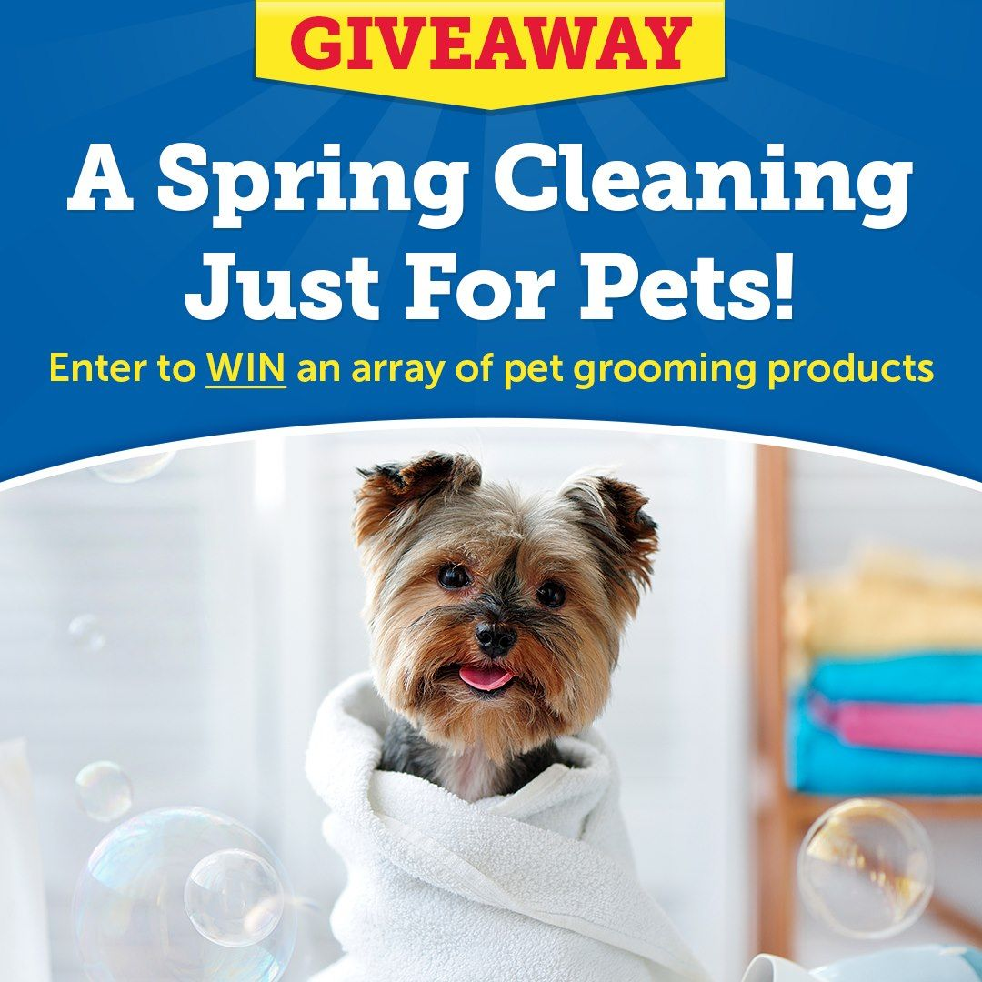 Save With 20 1800petmeds Offers Retailmenot Genie Instantly Applies The Best Codes At Checkout See Details Up To 20 In 2020 Pet Grooming Spring Cleaning Pets